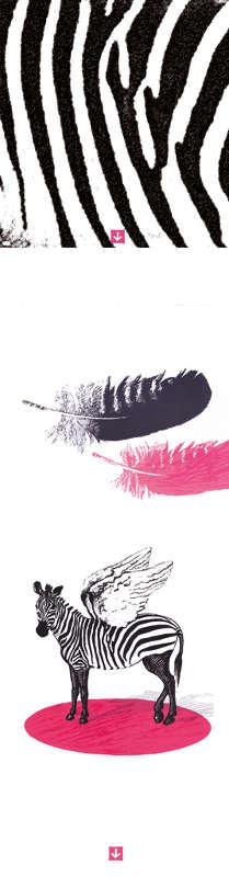 lithographie plume de zebre